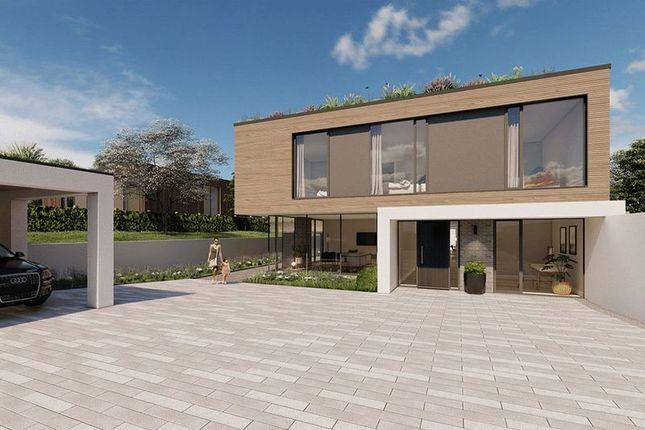 Thumbnail Detached house for sale in Wingate Lane, Long Sutton, Hook