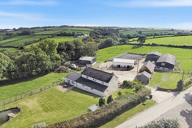 Thumbnail Equestrian property for sale in Northlew, Okehampton