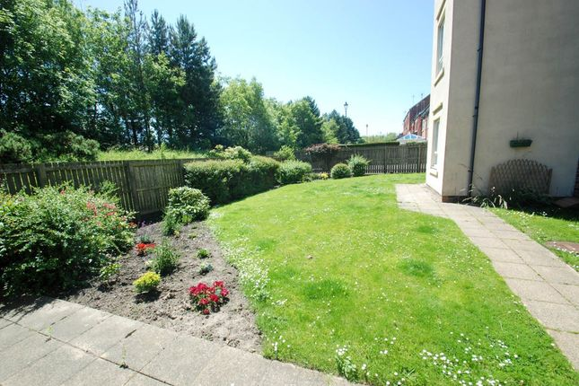 Communal Gardens of Greenside Drift, South Shields NE33