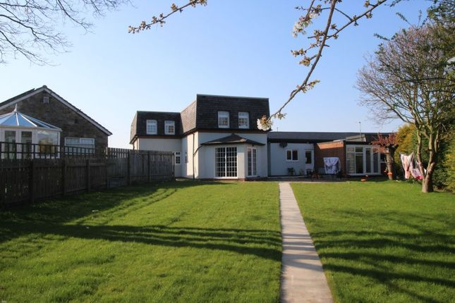 Thumbnail Flat to rent in Albion Way, Blyth