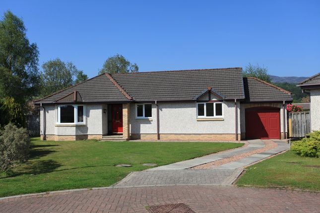 Thumbnail Detached bungalow to rent in Tay Avenue, Comrie