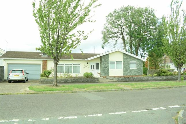 Thumbnail Detached bungalow for sale in Admirals Walk, Derwen Fawr, Sketty, Swansea