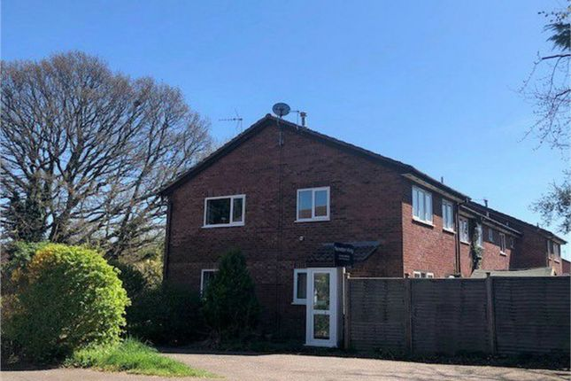1 bed semi-detached house to rent in Orchid Close, Taunton TA1