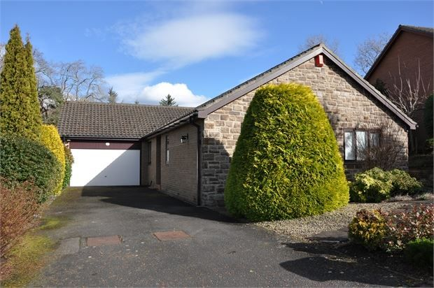 Thumbnail Detached bungalow to rent in Loughbrow Park, Hexham