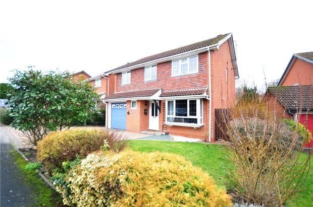 Thumbnail Detached house for sale in Petrel Croft, Basingstoke, Hampshire