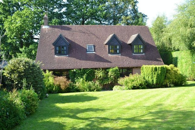 Thumbnail Detached house for sale in Spring Meadow, Forest Row
