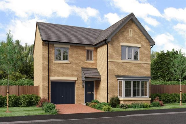 "Thumbnail Detached house for sale in ""The Seeger"" at Low Lane, Acklam, Middlesbrough"