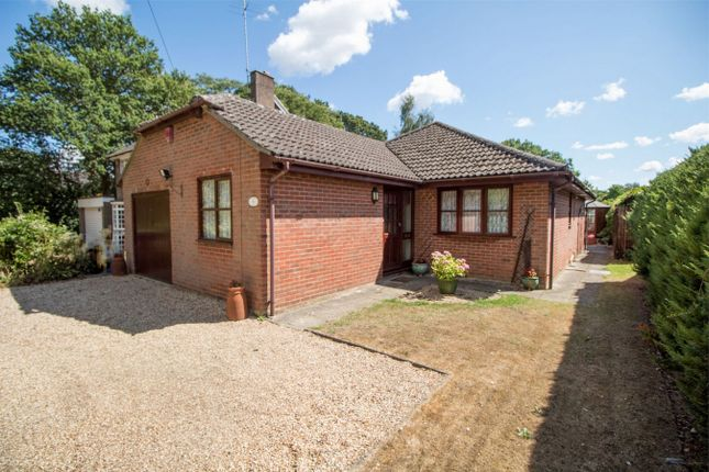 Thumbnail Detached bungalow for sale in The Hurst, Winchfield, Hook