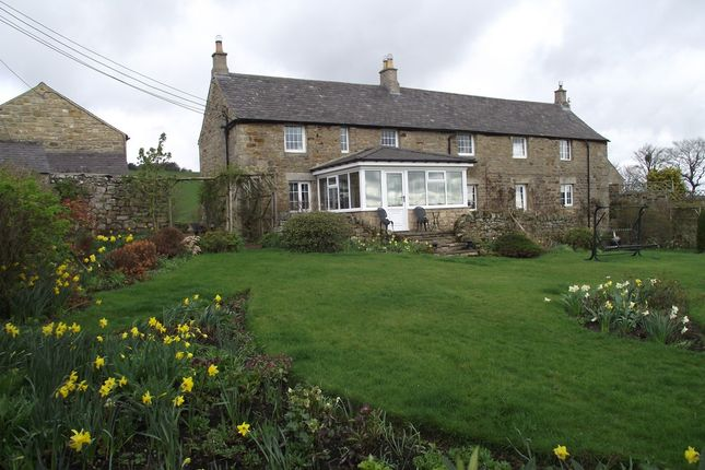 Thumbnail Detached house for sale in Haydon Bridge, Hexham