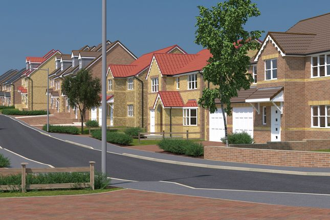 Thumbnail Semi-detached house for sale in Treetops, Common Road, South Kirkby