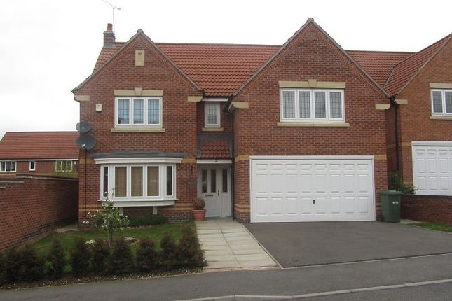 Thumbnail Detached house to rent in Vindex Close, Lincoln