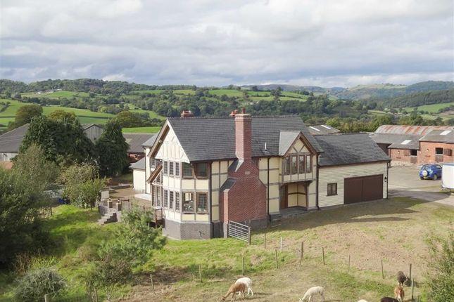Thumbnail Farm for sale in Collfryn, Trefnanney, Meifod, Powys