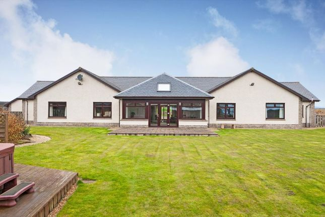 Thumbnail Detached bungalow for sale in Graymar House, Carmyllie, Arbroath