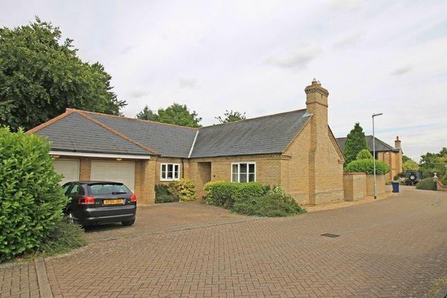 Thumbnail Detached bungalow for sale in St. Thomas, Eltisley