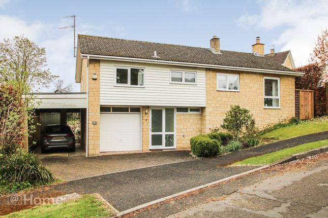 Thumbnail Detached house for sale in Littlemead, Ashley