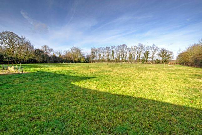 Thumbnail Land for sale in Chapel Street, Rocklands, Attleborough