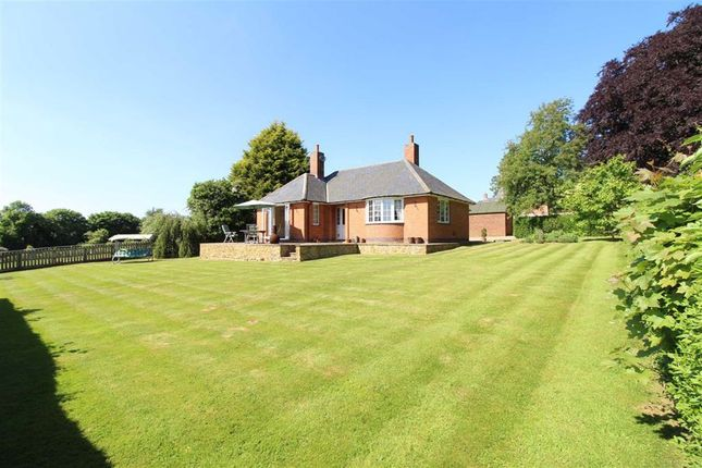 Thumbnail Detached bungalow for sale in Vicarage Lane, East Haddon, Northampton