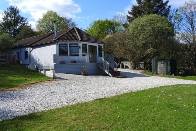 Thumbnail Detached bungalow for sale in Camustianavaig, Braes, Isle Of Skye
