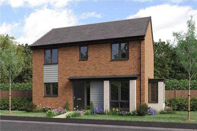 "Thumbnail Detached house for sale in ""The Darwin Da"" at Bristlecone, Sunderland"