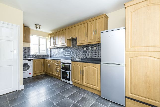 Thumbnail Terraced house to rent in Laurel Avenue, Durham