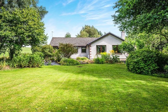 Thumbnail Bungalow for sale in Lochussie, Conon Bridge, Dingwall