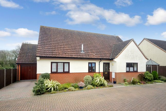 Thumbnail Detached bungalow for sale in School View, Clare Road, Braintree