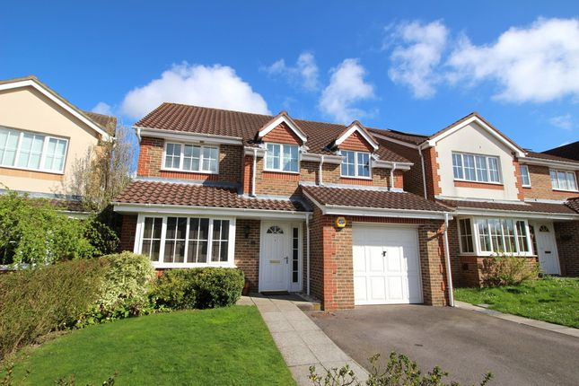 Thumbnail Detached house for sale in Squirrel Close, Park Gate, Southampton