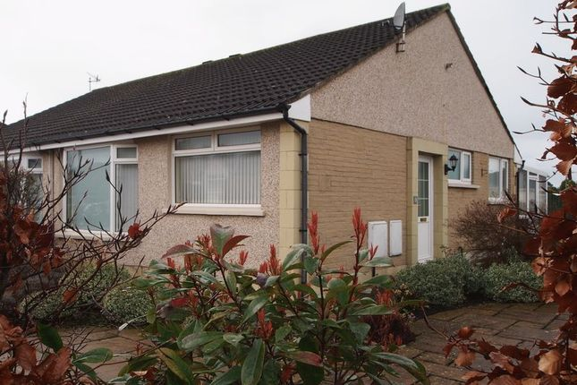 Thumbnail Semi-detached bungalow to rent in Taylor Grove, Morecambe