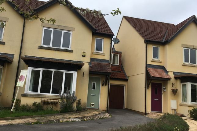 Thumbnail Semi-detached house to rent in Cappards Farm Rd, Bishop Sutton