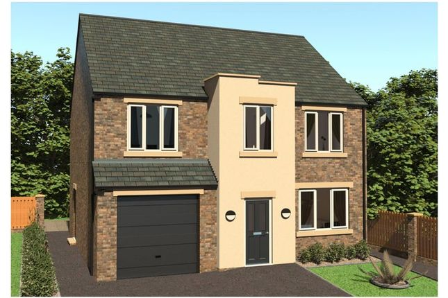 Thumbnail Detached house for sale in Plot 3 - Petersfield, Elvin Way, Chesterfield