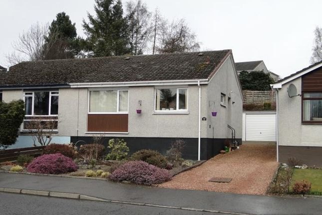 Thumbnail Semi-detached bungalow to rent in 143 Cedar Drive, Perth