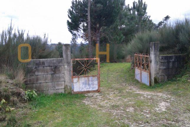 Land for sale in Parada De Gonta, 3460 Parada De Gonta, Portugal