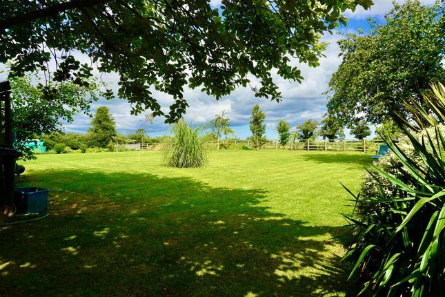 Thumbnail Detached house for sale in Neasham, Darlington