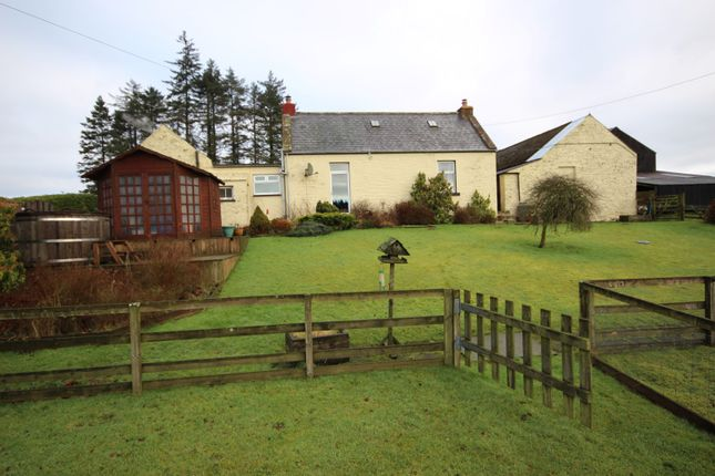 Thumbnail Equestrian property for sale in Catlowdy, Penton, Carlisle