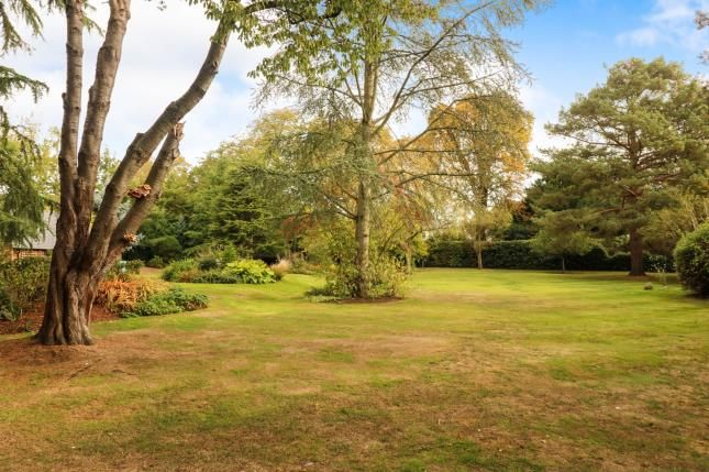 Garden of Cobham, Surrey KT11