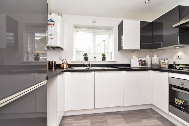 """Thumbnail Flat for sale in """"Falkirk"""" at Shackleton Close, Whitby"""