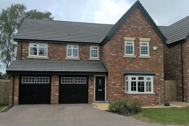 "Thumbnail Detached house for sale in ""Fenchurch"" at Grange Drive, Carlisle"