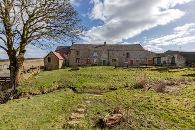 Thumbnail Land for sale in Carrs Farm, Wolsingham, Bishop Auckland