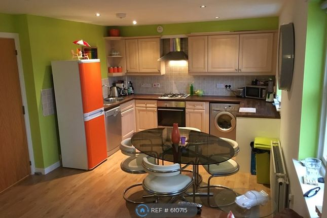 Thumbnail Flat to rent in Regent Walk, Aberdeen