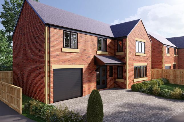 Thumbnail Detached house for sale in The Hollies, Welbeck Glade, Bolsover