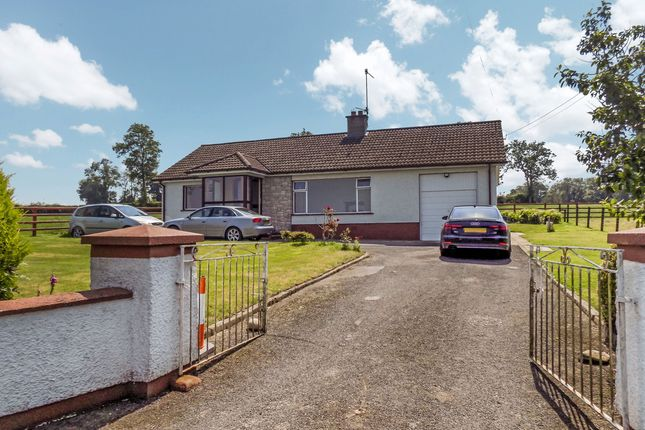 Thumbnail Bungalow to rent in Ballygowan Road, Hillsborough