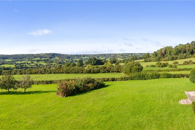 Views of Northleigh, Colyton, Devon EX24