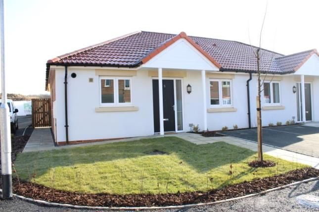 Thumbnail Bungalow for sale in The Limes, Coxhoe, Durham