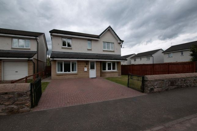 Thumbnail Detached house for sale in Caledonian Place, Alloa