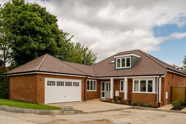 Thumbnail Detached bungalow for sale in St. Francis Close, Tring