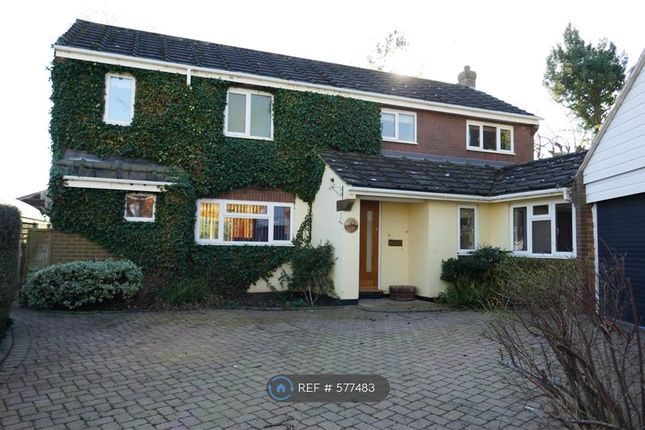 Thumbnail Detached house to rent in School Road, Wheaton Aston, Stafford