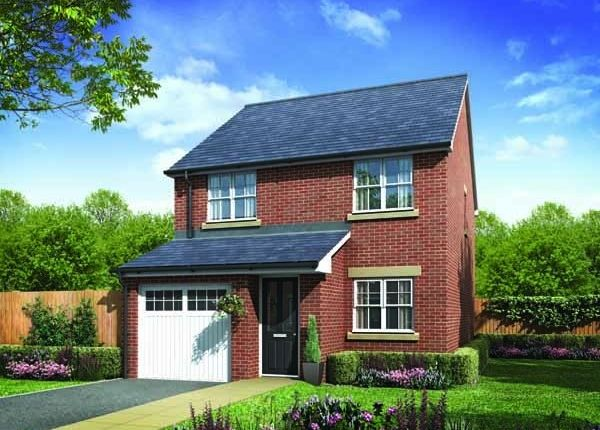 "Thumbnail Semi-detached house for sale in ""The Danby"" at Surtees Drive, Willington, Crook"