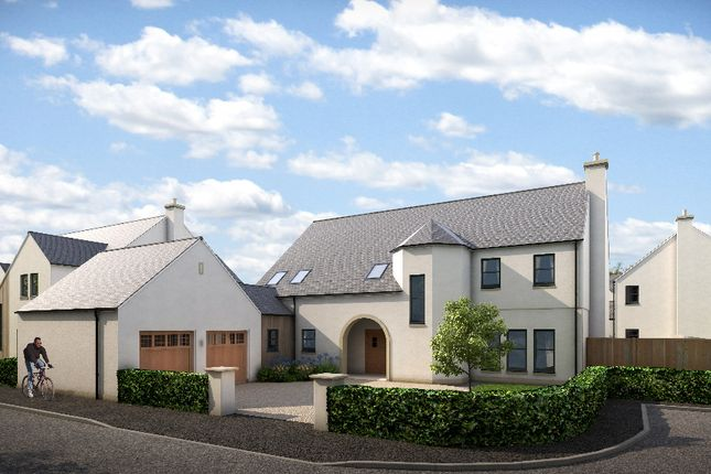 Thumbnail Detached house for sale in Plot 36, Larbert, Falkirk