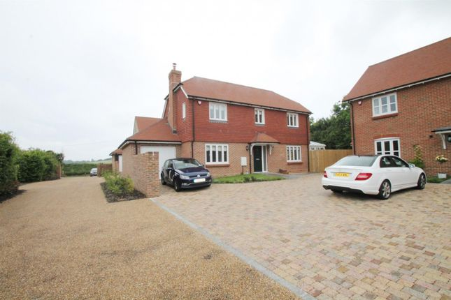 Thumbnail Detached house to rent in Northbrook Cottages, Titnore Lane, Worthing