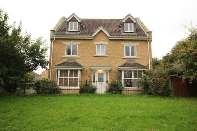 Thumbnail Detached house for sale in Ruby Close, Totton, Southampton